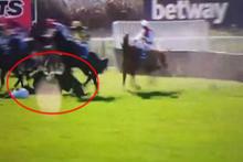 Yarışta engele takılıp yere düşen at hayatını kaybetti