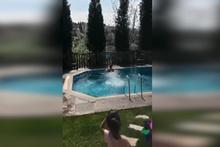 Demet Akalın, Okan Kurt çifti havuz sezonunu açtı