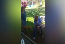 Sahibini ilk başta tanımayan köpeğin inanılmaz tepkisi!