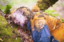 Bu görüntü sosyal medyayı salladı! Arılar kovanını...