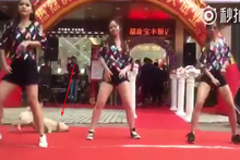 Kızların dansını trolleyen  köpek