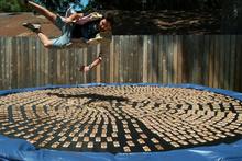 1000 adet fare kapanıyla dolu tramboline atlayan adam