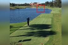 Golf oynarken ördeği vurdu