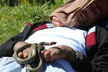 Bayburt'daki o yılanların ünü sınırları aştı!