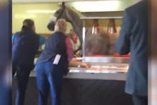 Hızını alamayan at lokantaya girdi