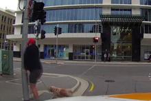 Sürücüye kızan yaya direğe kafa attı