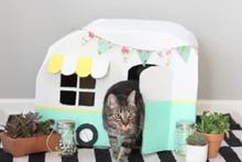 Kediler için muhteşem bir ev yapımı