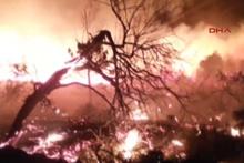 Muğla Datça'da orman yangını