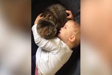 Kediyle sohbet eden sevimli bebek