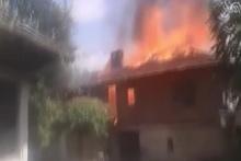 Hayvanları yangından kurtardılar