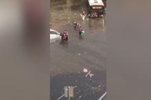 Otobüsten inip yüzmeye başladılar!