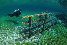 Avusturya'da her yaz göle dönüşen muhteşem park