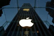 Apple Türkiye'deki kullanıcılarını uyardı