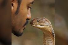 Babasını öldüren kobra yılanıyla şoke eden bir gösteri!