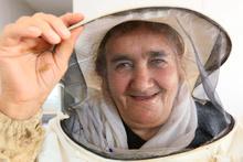 Vanlı kadın arıcılar organik bal hasadını yaptı