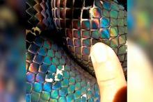 Muazzam bir parlaklığa sahip olan yılan