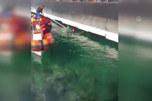 İskele altına sıkışan kediyi dalgıçlar kurtardı