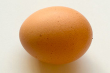 Sadece bir yumurta ile misafirlerinizin aklını başından alın