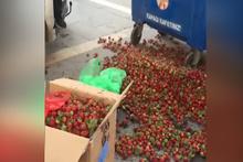Zabıtanın çöpe döktüğü çilekleri vatandaş satın aldı