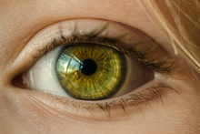 Laboratuvar ortamında retina üretildi