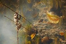 Gurung balı şaşkına çeviren bir yöntemle bakın nasıl elde ediliyor