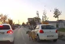 Otomobiline bağladığı köpeği dakikalarca sürükledi