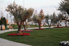 İstanbul 5 millet bahçesine kavuşuyor