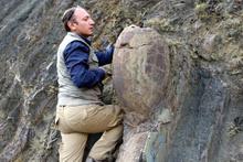 Erzurum'da 70 yıllık kaya Kaya Salyangozu görenleri hayrete düşürdü