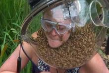 Kafasını böceklerle dolu bir fanusa soktu!