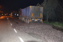 Kapağı açılan tır kasasındaki 15 ton hamsi yola döküldü