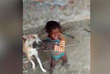 Anne köpek, yavrusunu almaya çalışan miniğe izin vermedi