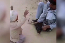 Sevimli çocuk horozu son anda kesilmekten kurtardı