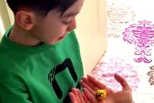 4,5 yaşındaki küçük çocuğun bitki sevgisi sosyal medyada ilgi odağı oldu