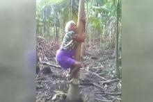 Yaşlı kadın yolda yürür gibi ağaca tırmandı