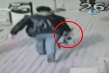 Vahşet! Hamile kediye yaptığı şeye bakın...