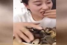 Yengeçleri canlı canlı böyle yedi