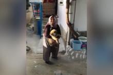 Sosyal medya bu videoyu konuşuyor! Böyle köpek sevgisi görülmedi