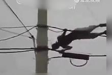 Elektrik tellerinde şov yapan adamın feci sonu!