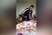 Adam bebeğe vurmaya başlayınca köpeğin tepkisine bakın