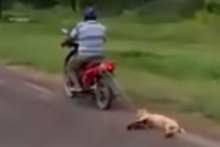 Dehşete düşüren görüntü! Köpeği motosikletin arkasına bağlayıp sürükledi