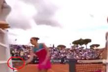 Çekyalı tenisçi Karolina Pliskova, hakem koltuğuna raketiyle vurdu
