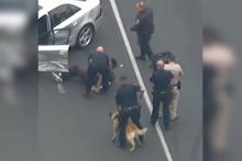 Hollywood sahnelerini aratmayan hırsız-polis kovalamacası