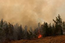 İki gün oldu: Korkunç yangın söndürülemiyor!