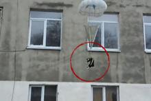 Siz nasıl insansınız! Kediyi paraşütle camdan fırlattılar
