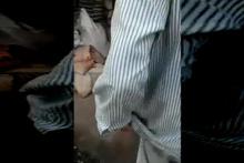 Pantolonuna fare girdi sonra bakın ne yaptı