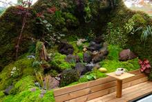 Japonlar gezen bahçe yaptı