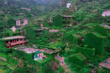Doğanın yeniden ele geçirdiği 'hayalet köy'