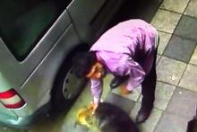 Bir köpeğe şiddet haberi daha: Bu kez yer Kadıköy!