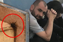 Böcekler istila etti: Korkunç olay ortaya çıktı!