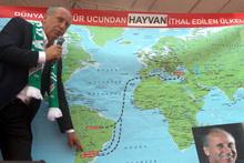 İnce'den Erdoğan'a Fenerbahçe göndermeli mesaj